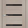 Межкомнатная дверь финиш пленка S 6 капучино 2