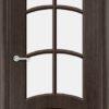 Межкомнатная дверь шпон Б 5 венге 1