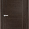 Межкомнатная дверь шпон Ландыш венге 1